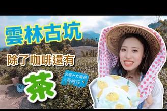 第一次當採茶女!!雲林古坑居然也產茶!台灣最著名的茶文化一定要認識一下 feat. Guang小光와니