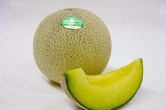 茨城夏季美味 哈密瓜