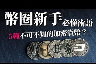 [蕾咪] 5種常見加密貨幣!?穩定幣、主流幣、空氣幣、傳銷幣、山寨幣是什麼?幣圈韭菜幣種專有名詞!