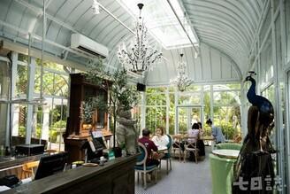 不只是高顏值餐廳|The Roman 森林系玻璃屋中的味蕾驚喜
