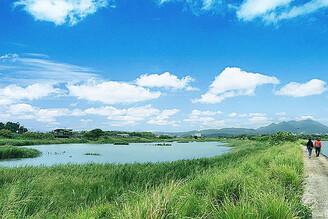 社子島解說小築週末環教活動 隨著候鳥強勢回歸